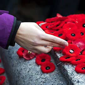 Image of a hand placing a poppy on a gravesite