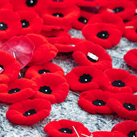 Remembrance Day photo